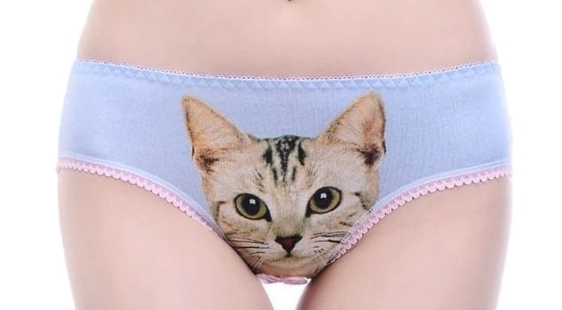 woman with cute pussy cat panties