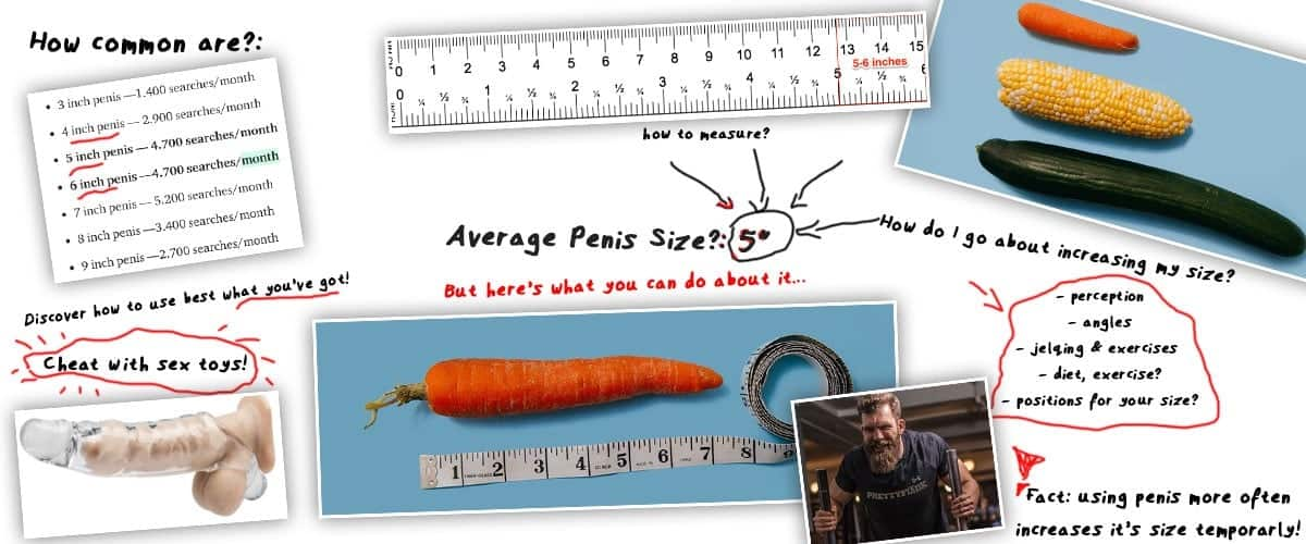 what is average penis size cover