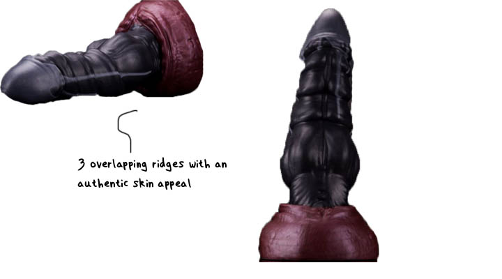 bad dragon design and functionality