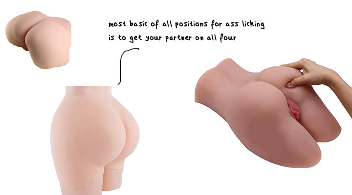 Find The Best Ass Licking Position