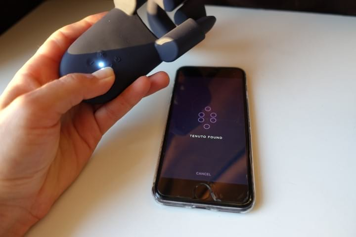 tenuto vibrator connecting to its app